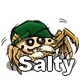 Salty: the misunderstood spider